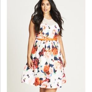City Chic floral Fever dress sz XS plus sz 14w